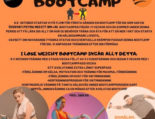 LOSE WEIGHT BOOTCAMP